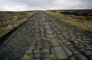 Paved Roman Road